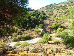 13Kritsa-Kloof-Wandelen-Op-Kreta13