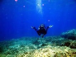 21Duiken-Duik-Excursie-op-Kreta21