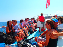 8Snorkelen-Excursie-op-Kreta8