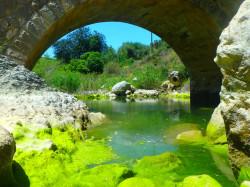 Cultuur op Kreta