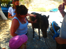 Koeken en avontuur op een active vakantie op Kreta (16)