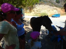 Koeken en avontuur op een active vakantie op Kreta (17)