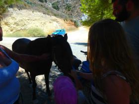 Koeken en avontuur op een active vakantie op Kreta (18)