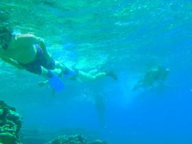 Snorekelen op vakantie op Kreta (108)