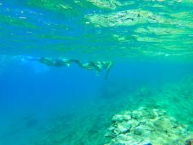 Snorekelen op vakantie op Kreta (119)