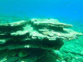 Snorekelen op vakantie op Kreta (12)