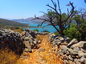 Snorekelen op vakantie op Kreta (44)