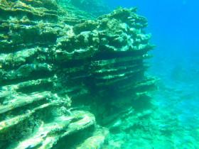 Snorekelen op vakantie op Kreta (6)