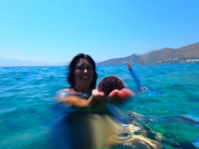 Snorekelen op vakantie op Kreta (69)