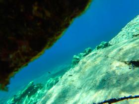Snorekelen op vakantie op Kreta (9)