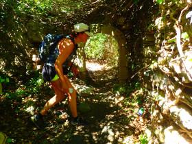 Wandelen en Hiken op Kreta, Active vakanties en excursies (130)