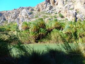 Wandelen en Hiken op Kreta, Active vakanties en excursies (41)