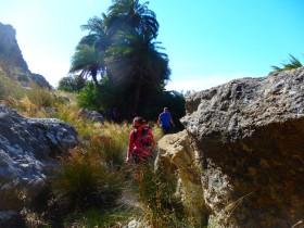 Wandelen en Hiken op Kreta, Active vakanties en excursies (42)