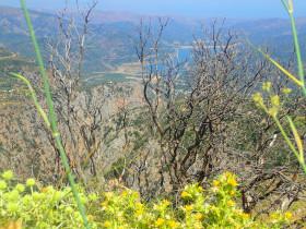 Wandelen en Hiken op Kreta, Active vakanties en excursies (67)